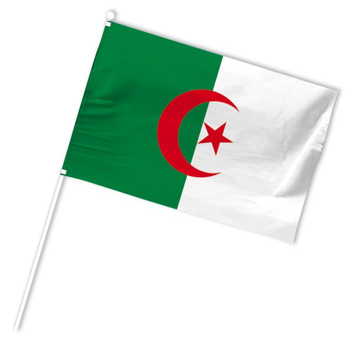 drapeau supporter algerie