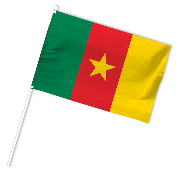 drapeau supporter cameroun