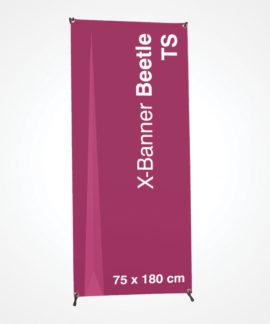 X Banner Beetle